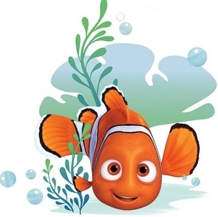 - 6 Inch Clownfish Clown Fish Finding Dory Nemo 2 Movie Removable Peel Self Stick Adhesive Vinyl Decorative Wall Decal Sticker Art Kids Room Home Decor Boys Children Nursery Baby 6x6 inches