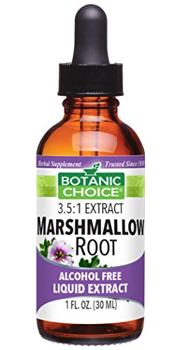 Botanic Choice Alcohol Free Liquid Extract, Marshmallow Root, 1 Fluid ounce (Pack of 24) by Botanic Choice