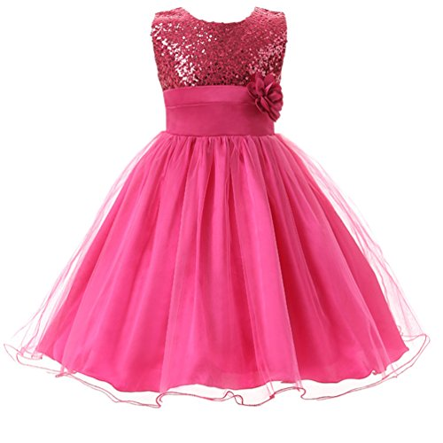 Csbks Little Girl Flower Sequin Princess Tulle Party Dress Birthday Ball Gowns 7 Rose Red ()