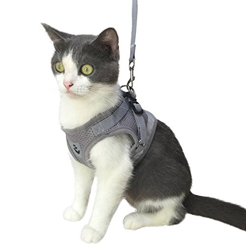 with Leash for Kitty Puppy Small Dogs Animal Adjustable Soft Mesh ()