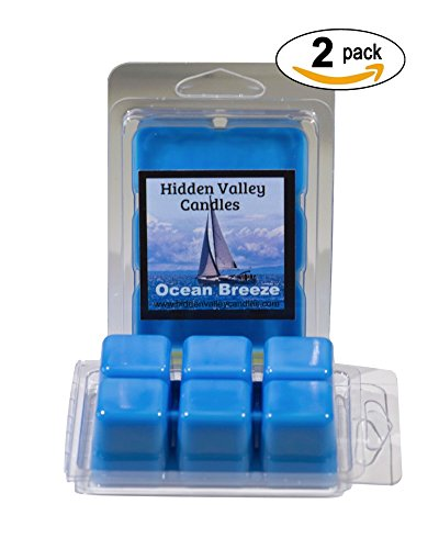 ocean-breeze-2-pack-double-scented-wax-melts-the-scent-of-a-fresh-ocean-breeze-with-a-top-note-of-fr