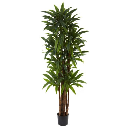 Nearly Natural 5403 Dracaena Tree, 6.5-Feet, Green