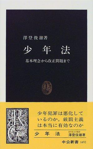 少年法―基本理念から改正問題まで (中公新書)