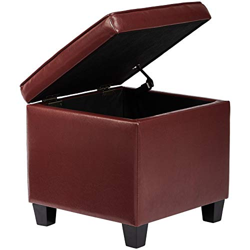 First Hill Dupont Square Wood Storage Ottoman with Faux-Leather Upholstery, Tomato (Best Stool Wood With Storages)