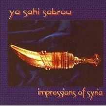 Ya Sahi Sabrou: Impressions of Syria