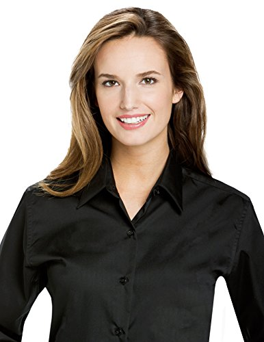 Microfiber Blouse - Luxe Microfiber Women's Fashion Fit Button-Down Long Sleeve Shirt Point Collar - Style Valarie