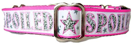 Regal Hound Designs 1  Wide Martingale Dog Collar  3 Sizes  Small  Medium  Large Xl   Spoiled  Design  Small 10 14