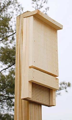 Club Pack of 6 Coveside Bat House Kits by BestNest (Image #2)