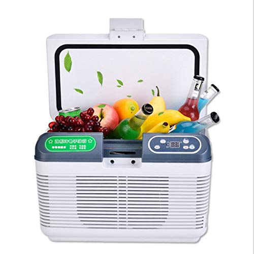 ZXZV Livestock refrigerators Thermostat car Refrigerator 17 Degree Small Refrigerator Portable Refrigeration Box, Suitable for aquaculture (Color : White, Size : 19L) by ZXZV