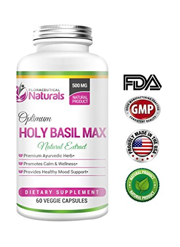 Cheap (Tulsi) Holy Basil 500 – Holy Basil Supplement – Vegetarian 60 Holy Basil Capsules