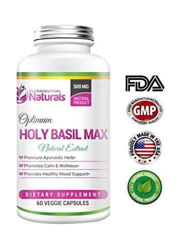 (Tulsi) Holy Basil 500 - Holy Basil Supplement – Vegetarian 60 Holy Basil Capsules