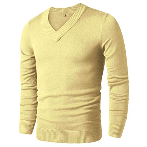LTIFONE Mens Casual Slim Comfortably Knitted Long Sleeve V-Neck Pullover Sweaters ()