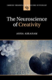 The Neuroscience of Creativity (Cambridge Fundamentals of Neuroscience in Psychology)