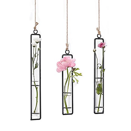 - Ivolador 3 Pack Different Length Test Tube Hanging Glass Planter Bud Flower Vase Terrarium Container for Home Decoration Green Plants Wedding