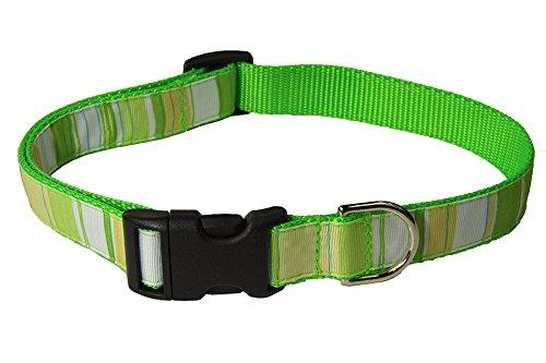 Large Green/Multi Stripe Dog Collar: 1