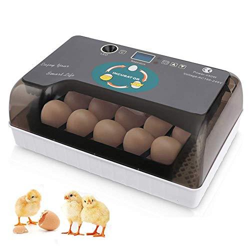 Mini Egg Incubator 12-35 Eggs Fully Automatic
