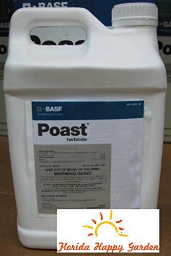 poast-herbicide-25gal-sethoxydim-18-by-basf
