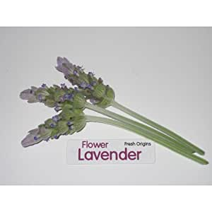 Edible Flower - Lavender - 4 x 50 Count