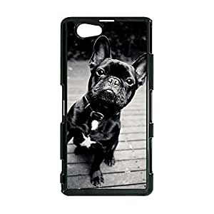 Lovely French Bulldog Phone Case Cover for Sony Xperia Z1 Compact Mini French Bulldog Stylish