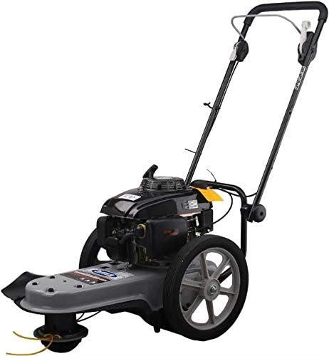 LEM Select AMA DC565 - Desbrozadora con ruedas: Amazon.es: Jardín