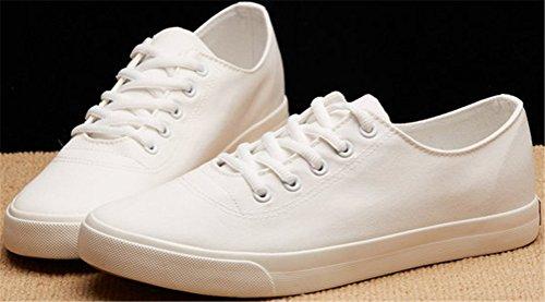 Satuki Canvas Schoenen Voor Heren, Casual Lage Top Klassieke Veturige Zachte Atletische Platte Lichtgewicht Sportmode Sneakers Wit