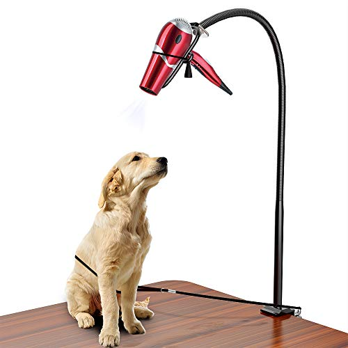 LuckIn Dryer Stand Hands Free, Stainless Steel Heavy Duty Table Blow Dryer Holder 360 Degrees Rotation with Adjustable Clamp and No-Sit Haunch Holder, Third Arm for Hair Styling, Pet Grooming (Dogs Hair For Dryer)