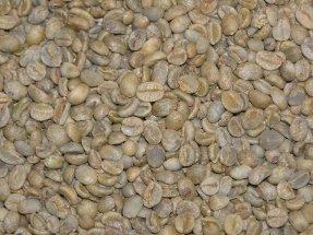 Yemen Mocha Green Coffee Beans - 5lbs