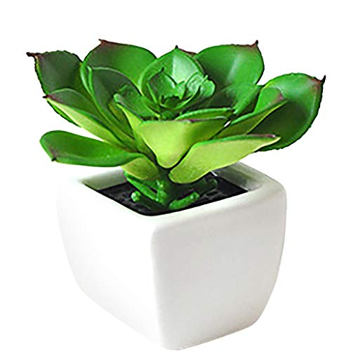 TOPBIGGER Artificial Succulent Potted Plants Without Fire Aromatherapy Car Perfume Car Potted Aromatherapy Reed Oil Disperser Water Lotus Lemongrass ()