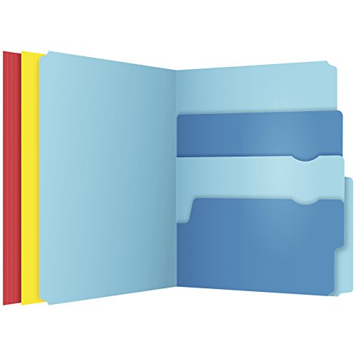 Pendaflex Divide It Up File Folders, Letter Size, Assorted Colors, 12/Pack (10773) ()