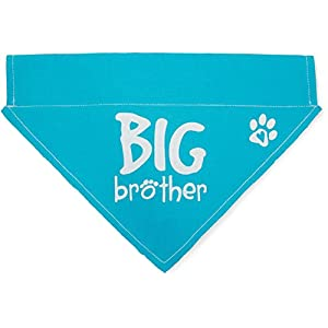 Pavilion Gift Company Big Brother Blue Paw Print Large Dog Slip on the Collar Bandanna,