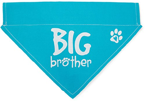 Pavilion Gift Company 45613 Pavilion's Pets - Blue Paw Print Large Dog Slip on The Collar Bandanna - Big Brother
