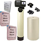 Iron Pro 2 Combination (Water Softener + Iron Filter)