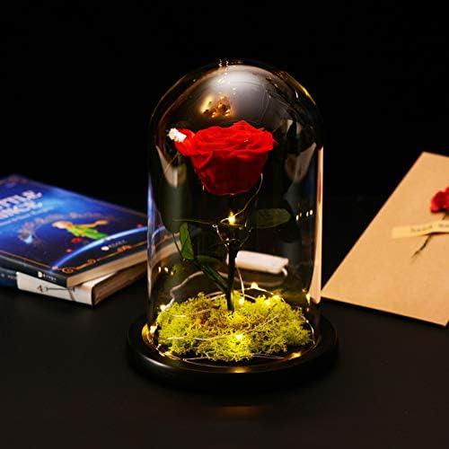 TP&DD Principito LED Flor eterna,Cubierta de Cristal con la luz Rosa,Decoración Creativa Cumpleaños Caja C 20x15cm(8x6inch): Amazon.es: Hogar