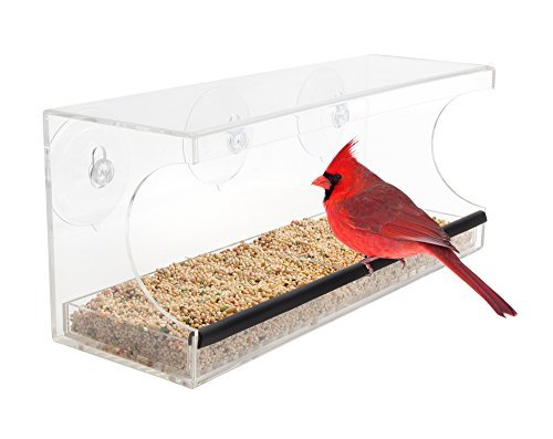 (Bird Feeders By Stephanie Clear Acrylic Window Mounted, Strong Suction Cups, Squirrel Proof, Large Sectioned Seed Tray With Drain Holes, Wind And Rain)