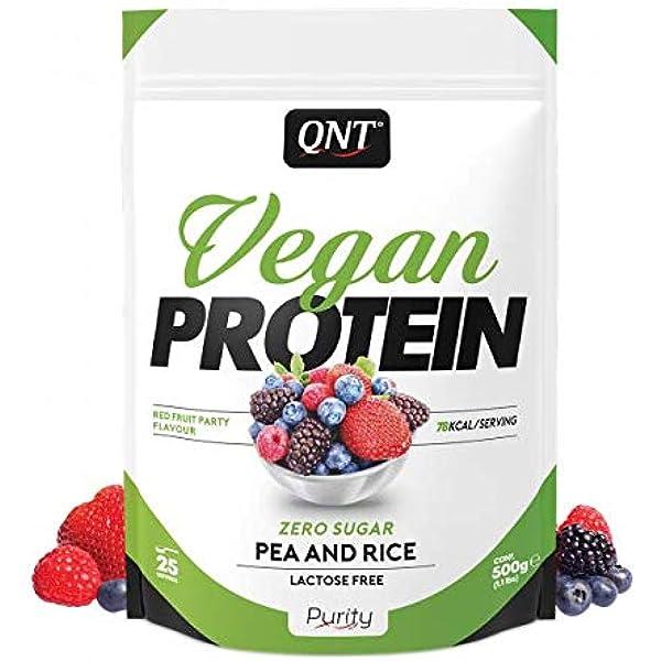QNT FID63653 Vegan Protein Powder (500 g), 1 Unidad: Amazon ...