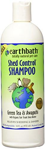 Dog Hawaiian Ginger (Earthbath Green Tea Shampoo for Pets, 16-Ounce)