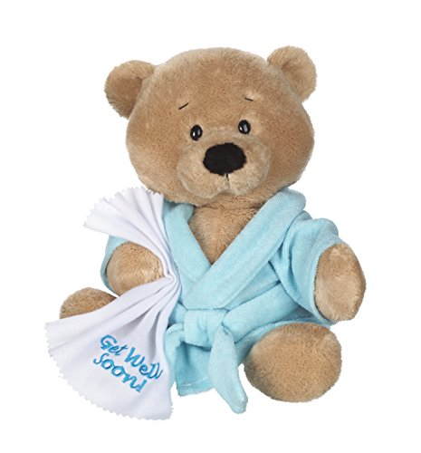Ganz-105-Get-Well-Teddy-with-Blue-Robe-Plush