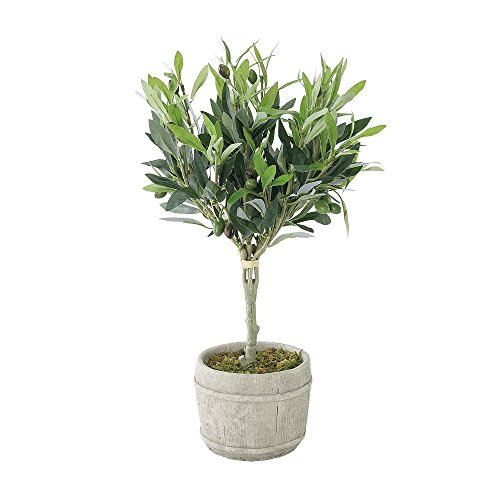 (Time Concept Decor Imitation Olive Tree Plant w/Black Fruits - Large - Artificial Indoor Houseplant)
