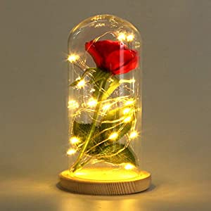 Sixpi Beauty and Beast Roses, Dream Flower Red Silk Rose with LED Light and Fallen Petals on a Glass Dome Wooden Base, Best for Weddings, Anniversaries, Educational Gifts for Kids 9