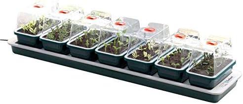 Lote de 7 Mini invernaderos (chauffantes Super 7 – Garland – 76 x 18, 5 x 15: Amazon.es: Jardín
