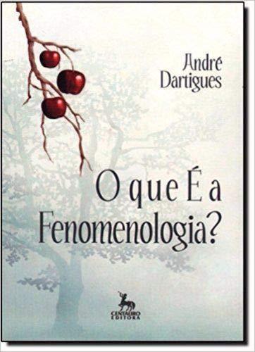 Que E A Fenomenologia?, O