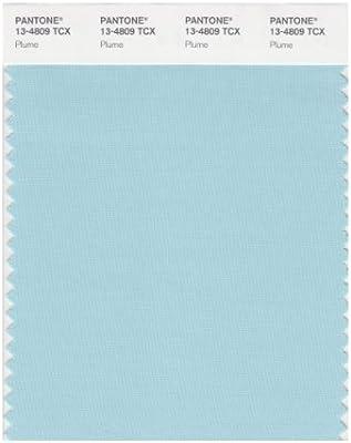 Amazon.com: Pantone Smart color Swatch tarjeta, 13-4809X ...