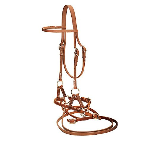 Tory Harness Leather Side Pull with ()