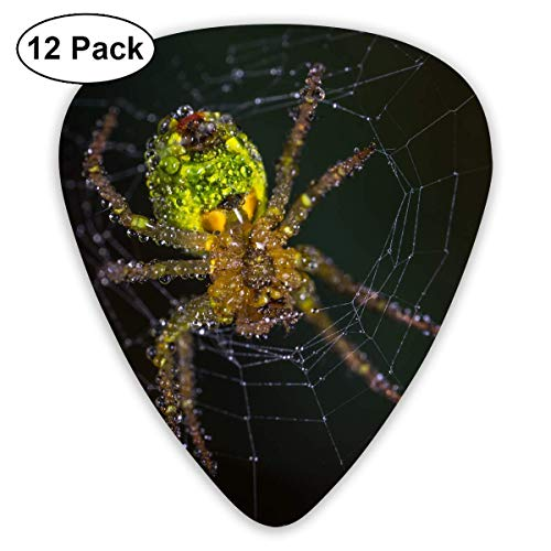 HOOAL Custom Guitar Picks, Halloween Yellow and Green Spider Guitar Pick,Jewelry Gift For Guitar Lover,12 Pack ()
