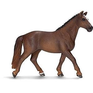 汉诺威马是典型的长方形(长度大于高度)现代赛马