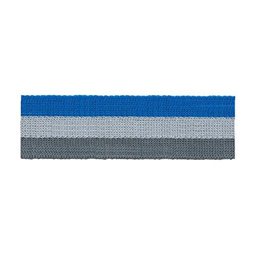 S.I.C. SIC-1253 コットンニットテープ(ストライプ) 30mm C/#40 コバルトブルー×ペールシルバー×チャコール 1巻(30m)