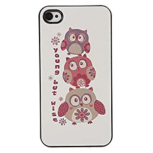 SHOUJIKE Festival Owls Pattern PC Hard Case with 3 Packed HD Screen Protectors for iPhone 4/4S