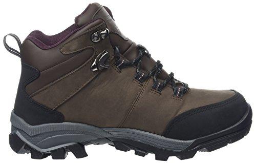 Regatta Asheland, Women's High Rise Hiking Boots Brown (Peat/Dkburga)