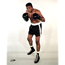 Floyd Patterson - 20x24 Boxing Photo Poster (posed, full body)