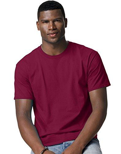 - Hanes Mens Tagless T Shirt (Cardinal Red, XX-Large)